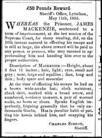 James Mackenzie - wanted